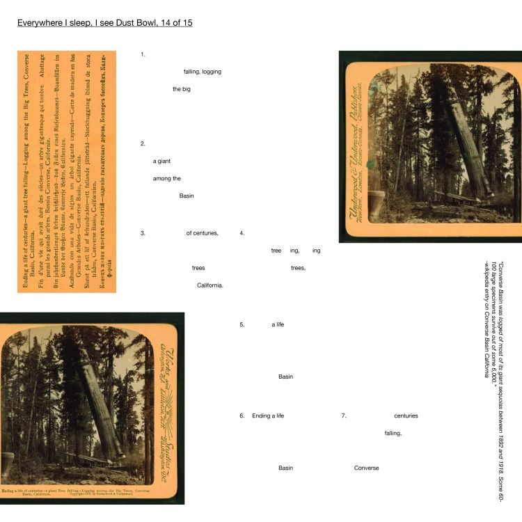 """Multimedia collage: """"Converse Basin was logged of most of its giant sequoias between 1892 and 1918. Some 60- 100 large specimens survive out of some 6,000."""" -wikipedia entry on Converse Basin California"""